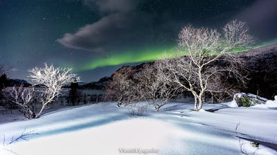 Photographier les aurores boréales : En territoire hostile