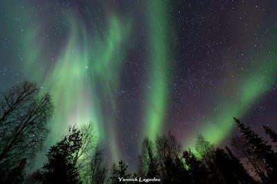Photographier les aurores boréales : La nuit polaire