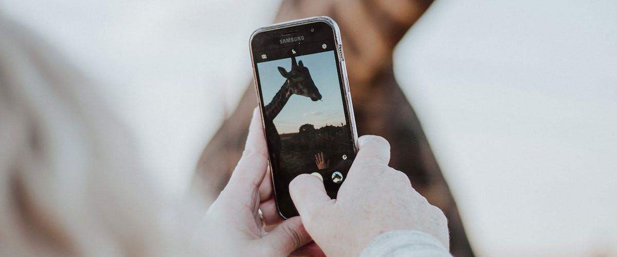 5 Tipps für erfolgreiche Smartphone Fotografie
