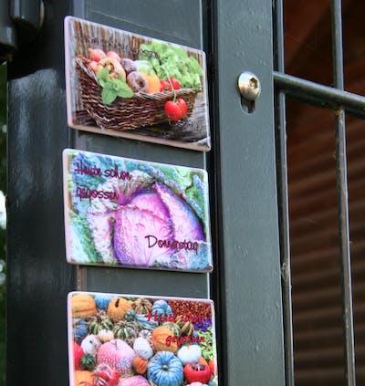 Überblick verschiedener Pixum Fotomagnete, gestaltet als Gartenmagnete.