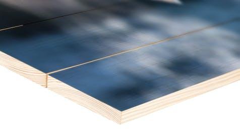 Pine Wood Panel Print