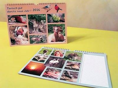 Dierenkalender zelf maken